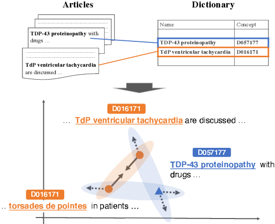 Figure 1 for Biomedical Entity Linking with Contrastive Context Matching