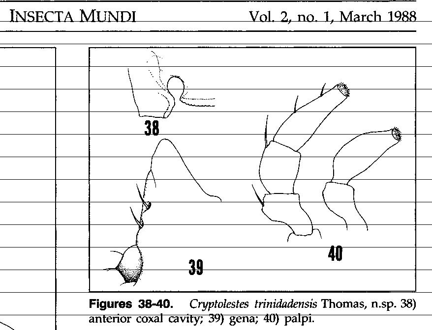 figure 38-40