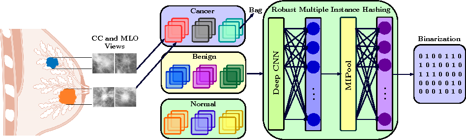 Figure 3 for Learning Robust Hash Codes for Multiple Instance Image Retrieval