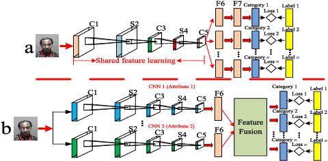 Figure 1 for A Novel Multi-Task Tensor Correlation Neural Network for Facial Attribute Prediction