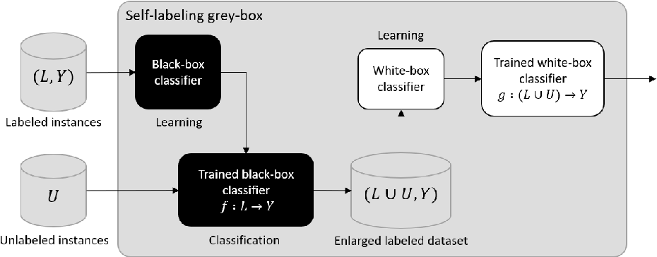 Figure 1 for An interpretable semi-supervised classifier using two different strategies for amended self-labeling