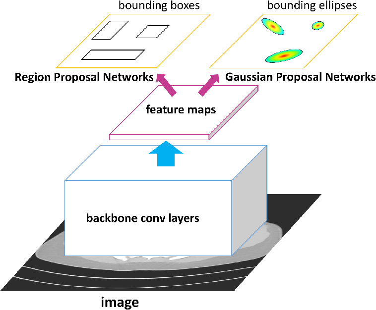 Figure 1 for Detecting Lesion Bounding Ellipses With Gaussian Proposal Networks
