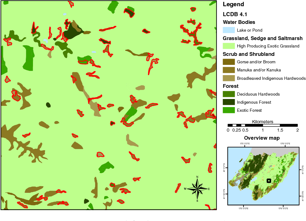 Fig. 5 A subset of theWellington region (LCDB), showing newly identified woody patches outlined in red. The woody patches are classified as outlined in Sec. 3.2.