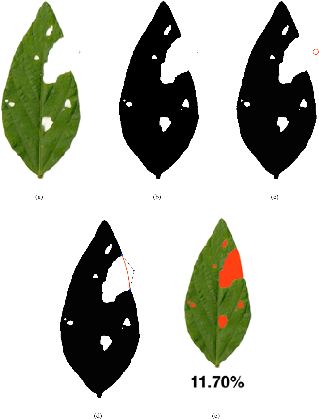 Figure 2 for BioLeaf: a professional mobile application to measure foliar damage caused by insect herbivory