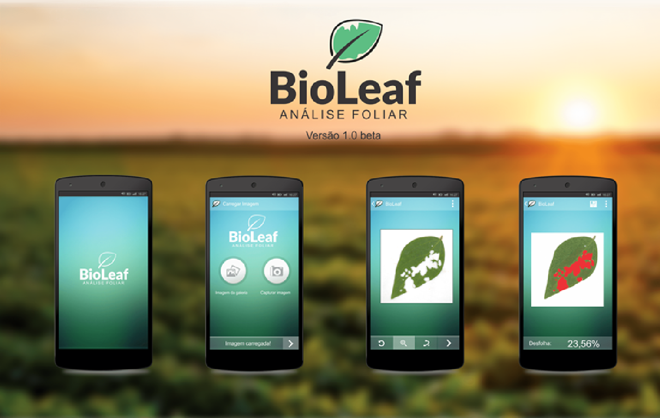 Figure 3 for BioLeaf: a professional mobile application to measure foliar damage caused by insect herbivory