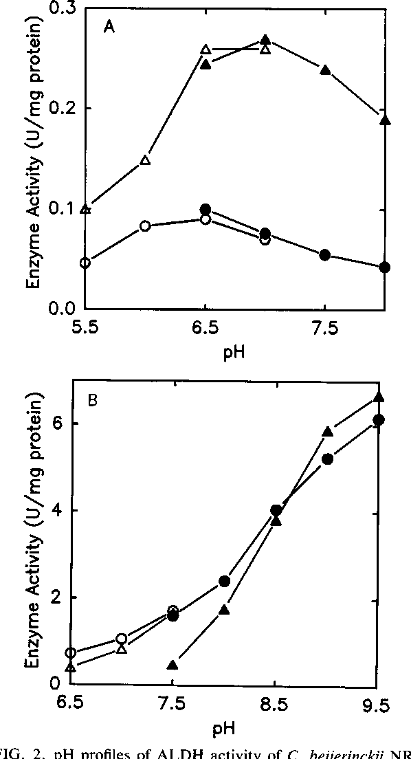 FIG. 2. pH profiles of ALDH activity of C. beijerinckii NRRL B592. (A) Profile in the physiological direction. The reaction mixture (1 ml) contained 0.2 mM butyryl-CoA and 21 ,ug of protein in 50 mM potassium MES (pH 5.5 to 7) or 50 mM potassium MOPS (pH 6.5 to 8). The coenzyme was 0.2 mM NADH (0, 0) or 0.2 mM NADPH (A, A). (B) Profile in the nonphysiological direction. The reaction mixture contained 0.5 mM CoA, 5 mM DTT, 11 mM butyraldehyde, and 21 p.g of protein in 50 mM potassium MOPS (pH 6.5 to 7.5) or 50 mM potassium glycylglycine (pH 7.5 to 9.5). The coenzyme was 2 mM NAD+ (0, 0), or 2 mM NADP+ (A, A).