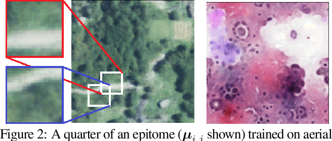 Figure 3 for Mining self-similarity: Label super-resolution with epitomic representations
