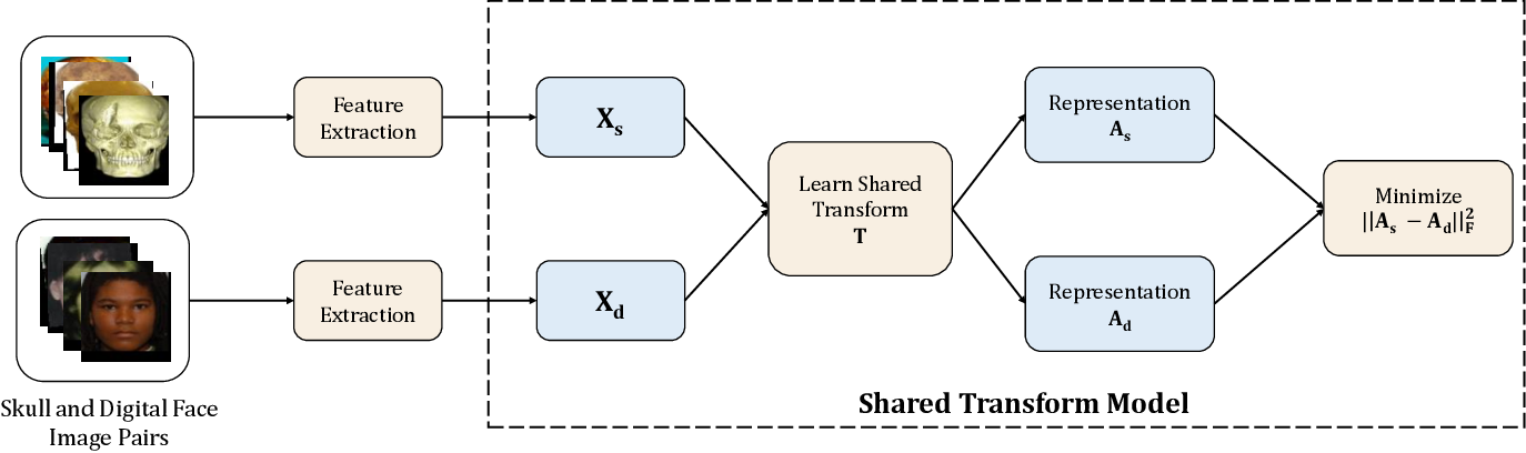 Figure 4 for Learning A Shared Transform Model for Skull to Digital Face Image Matching