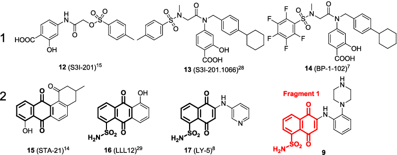 Figure 2. Representative small molecule STAT3 inhibitors. 9 was designed by this study and fragment 1 was colored as red.