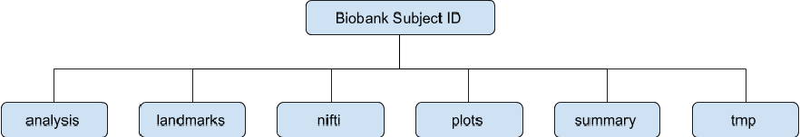 Figure 3 for Image Processing and Quality Control for Abdominal Magnetic Resonance Imaging in the UK Biobank