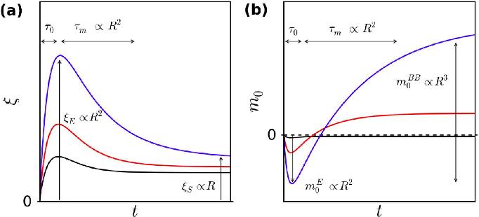 Molecular Hydrodynamics