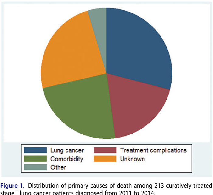 Early death in Danish stage I lung cancer patients: a