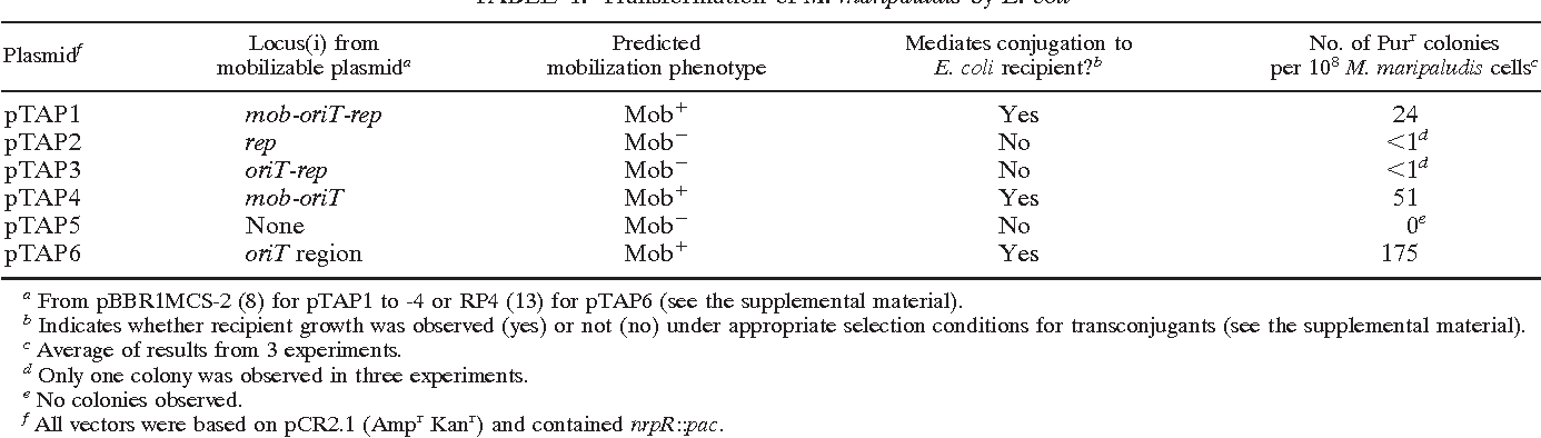 TABLE 1. Transformation of M. maripaludis by E. coli