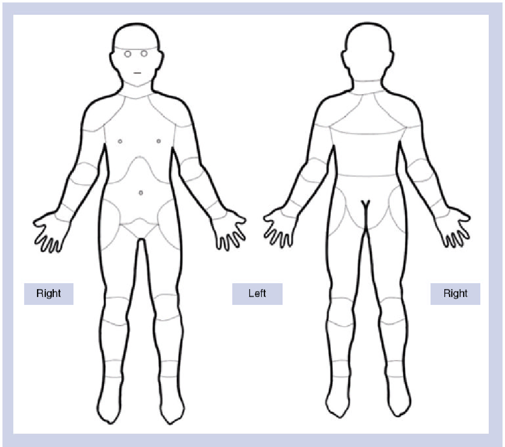 Figure 1 From Pain Charts Body Maps Or Manikins In Assessment Of