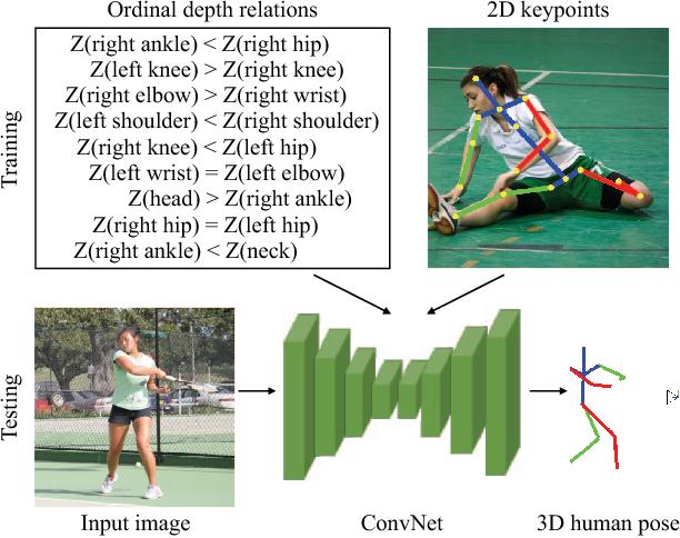 Figure 1 for Ordinal Depth Supervision for 3D Human Pose Estimation