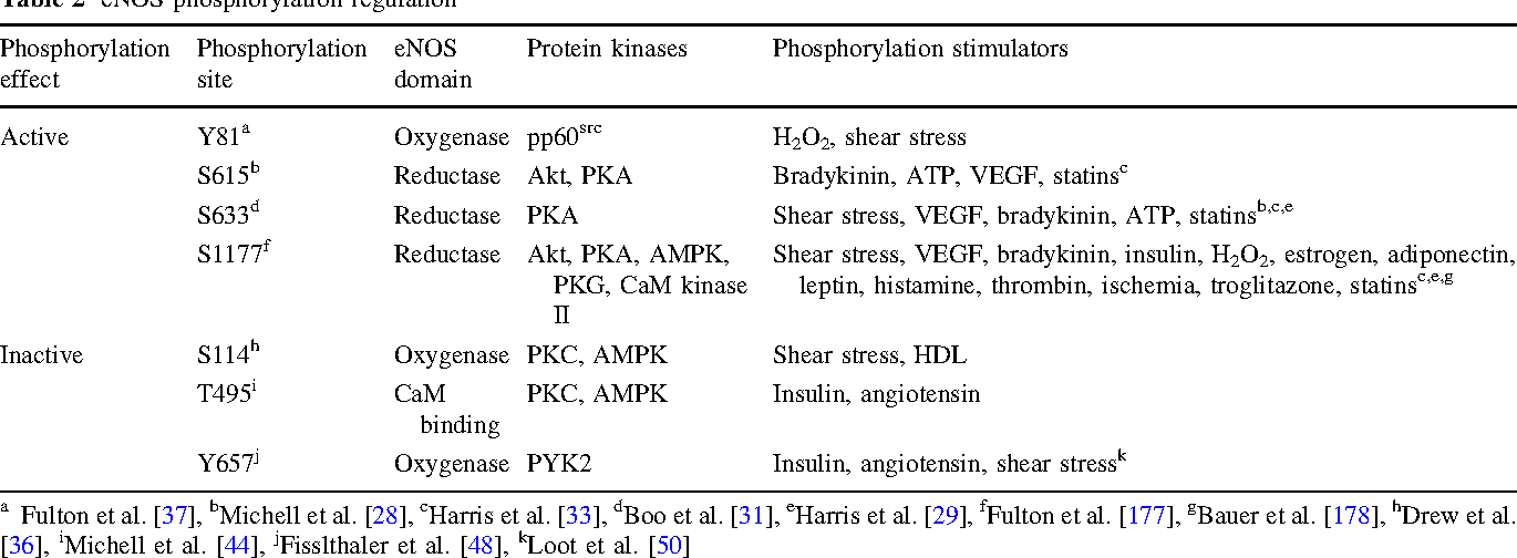 Table 2 from Endothelial nitric oxide synthase in the