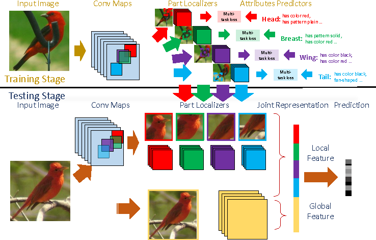 Figure 3 for Localizing by Describing: Attribute-Guided Attention Localization for Fine-Grained Recognition