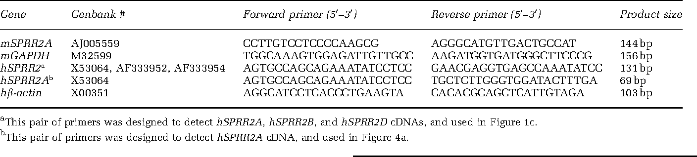 Table 1 Primers used in real-time RT-PCR