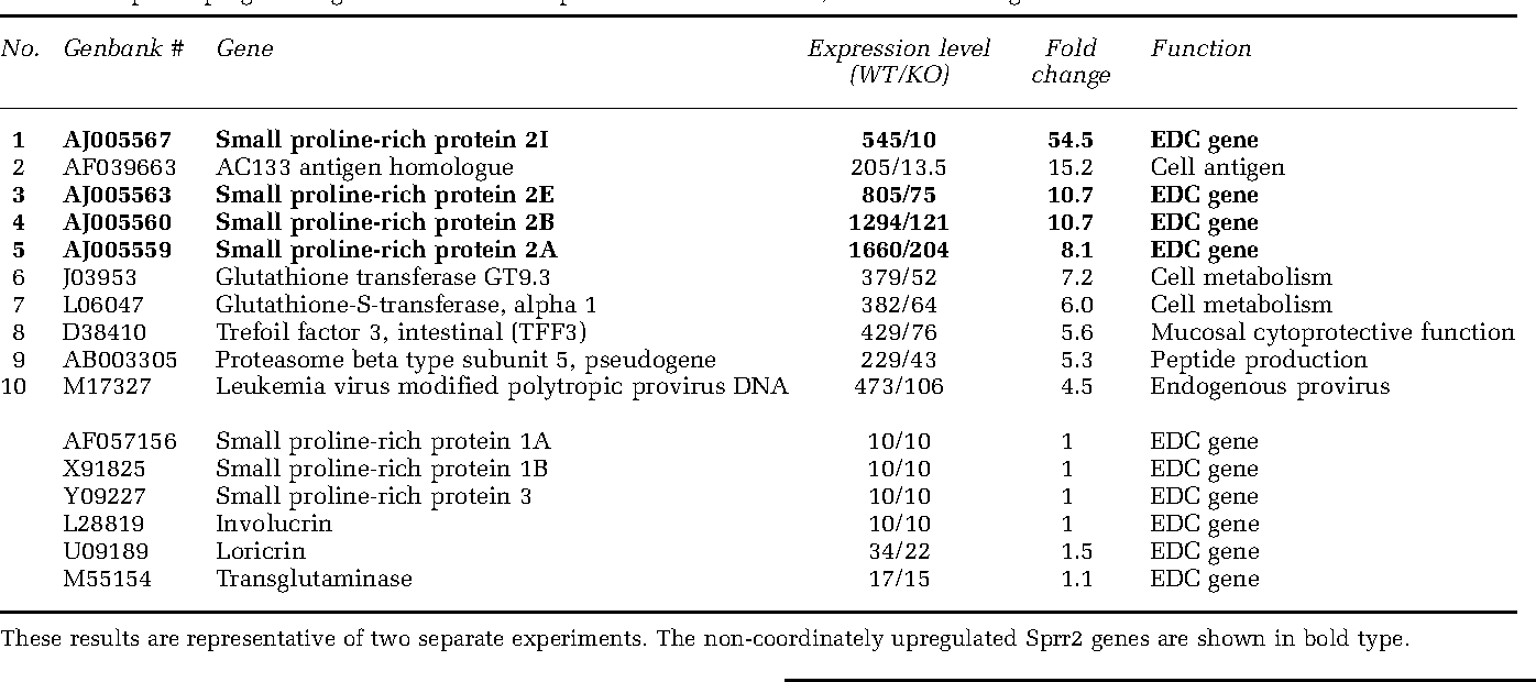 Table 2 Top 10 upregulated genes in IL-6+/+ compared with IL-6 / BEC, and other EDC genes