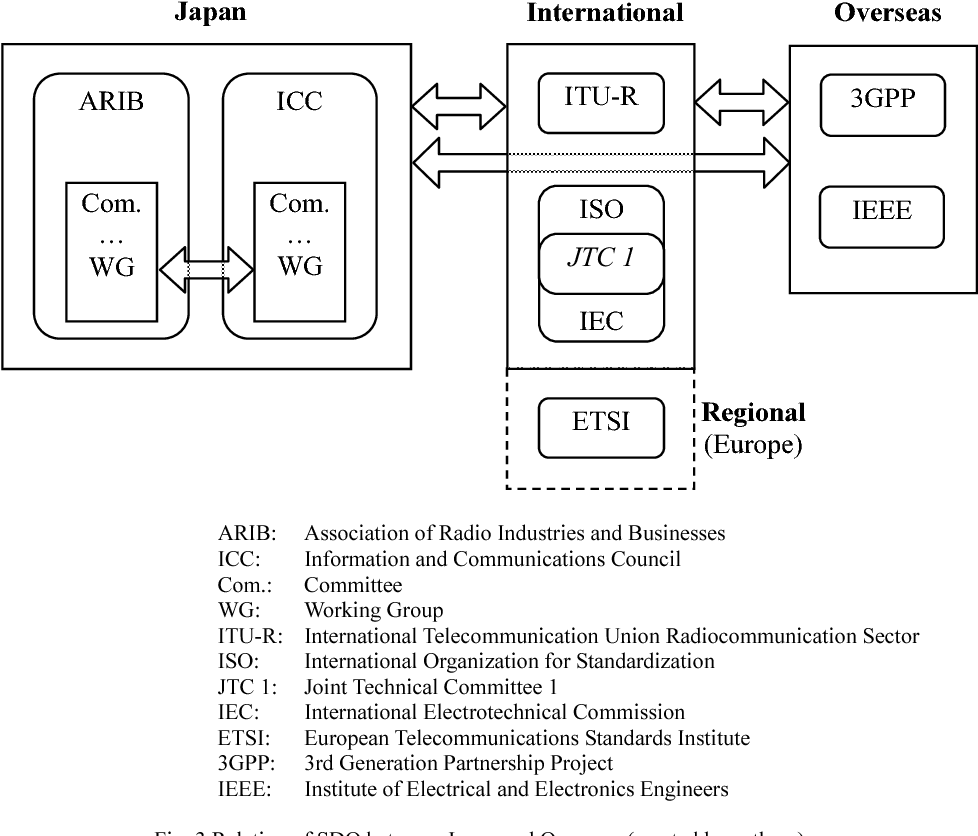 Figure 3 from Japanese firms' standardization strategies in the case