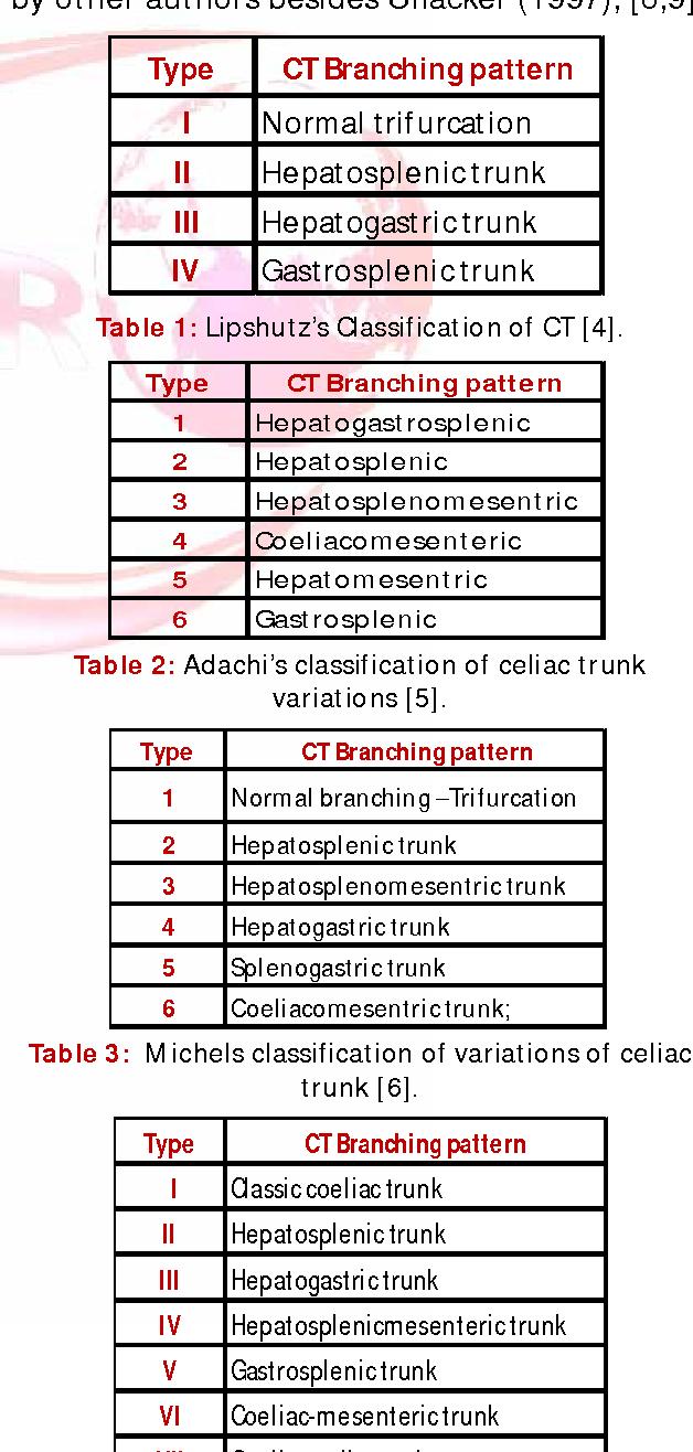 Hepatic Artery Sma Superior Mesenteric Artery Ripa Right