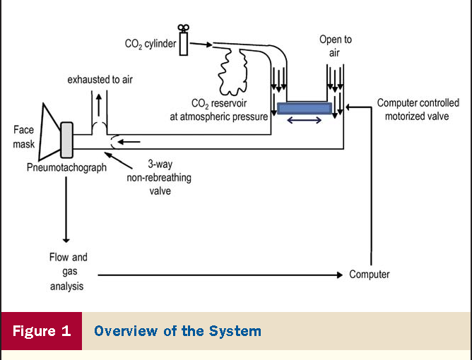 Real Time Dynamic Carbon Dioxide Administration A Novel Treatment