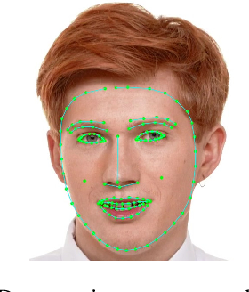 Figure 4 for Real-time Facial Surface Geometry from Monocular Video on Mobile GPUs
