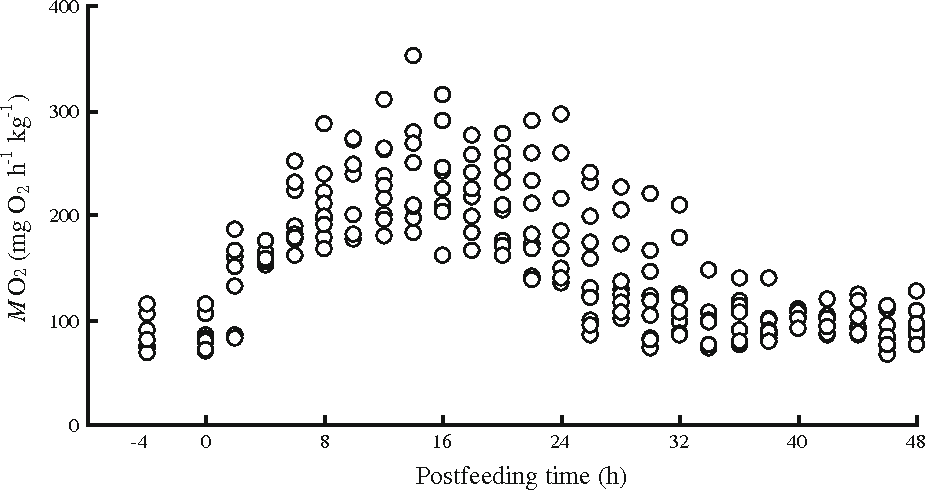 Effect Of Feeding On The Function And Structure Of The Digestive