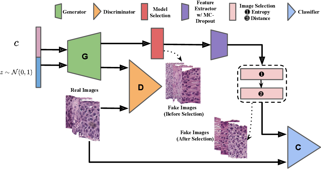 Figure 1 for Selective Synthetic Augmentation with Quality Assurance