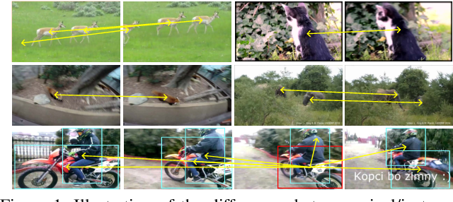 Figure 1 for Object Detection in Video with Spatial-temporal Context Aggregation