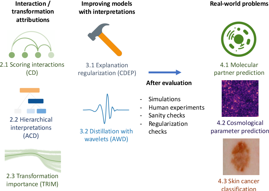 Figure 1 for Interpreting and improving deep-learning models with reality checks