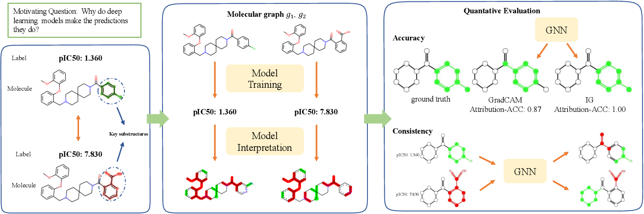 Figure 1 for Quantitative Evaluation of Explainable Graph Neural Networks for Molecular Property Prediction