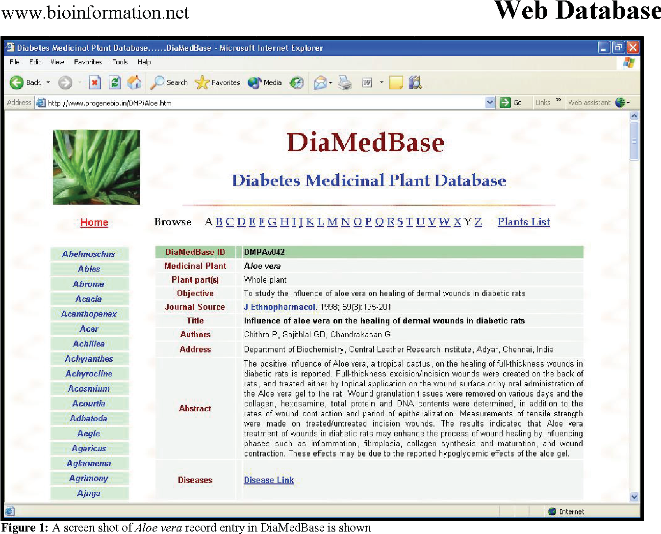 PDF] A database of 389 medicinal plants for diabetes