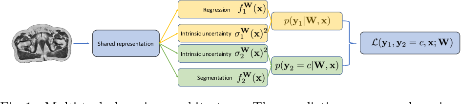 Figure 1 for Uncertainty in multitask learning: joint representations for probabilistic MR-only radiotherapy planning