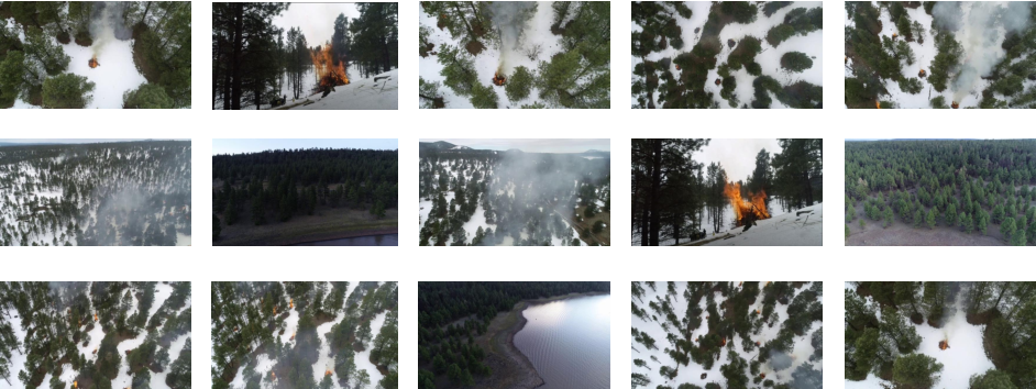 Figure 2 for Aerial Imagery Pile burn detection using Deep Learning: the FLAME dataset