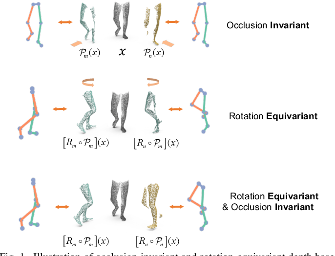 Figure 1 for Occlusion-Invariant Rotation-Equivariant Semi-Supervised Depth Based Cross-View Gait Pose Estimation