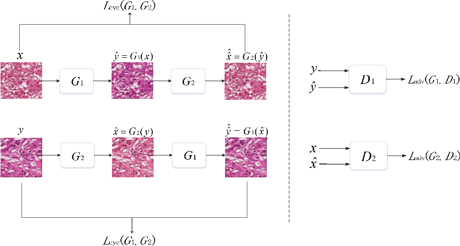 Figure 1 for Stain Style Transfer using Transitive Adversarial Networks