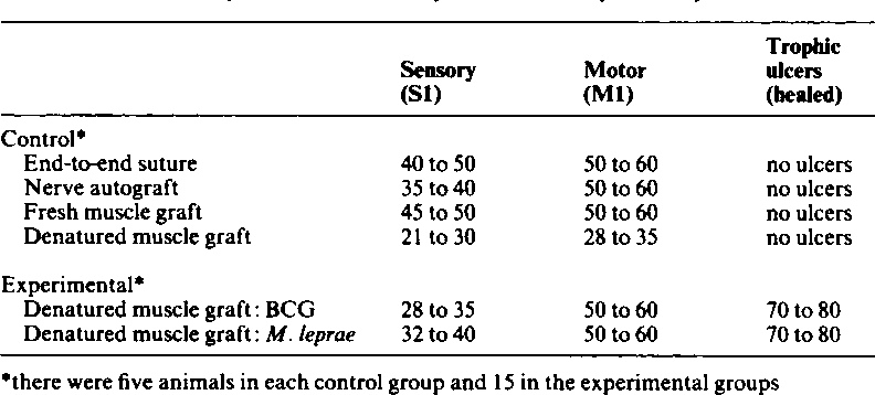 Table II from Denatured muscle grafts for nerve repair  An