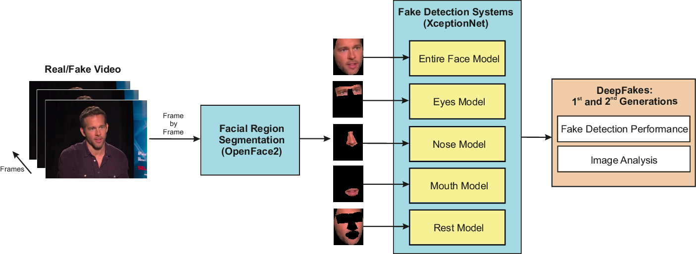 Figure 1 for DeepFakes Evolution: Analysis of Facial Regions and Fake Detection Performance