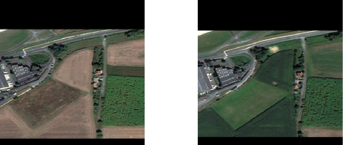 Figure 1 for Adversarial Examples in Remote Sensing