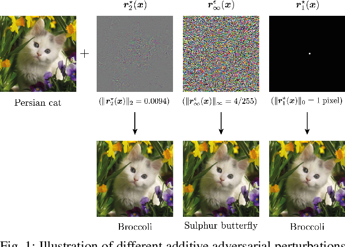 Figure 1 for Optimism in the Face of Adversity: Understanding and Improving Deep Learning through Adversarial Robustness