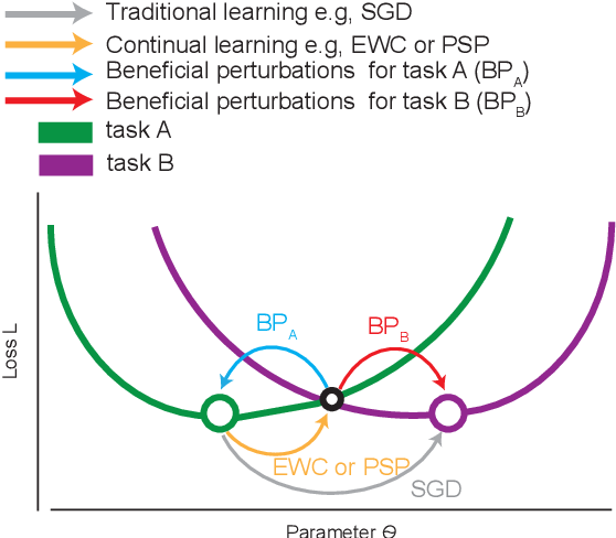 Figure 1 for Beneficial Perturbation Network for designing general adaptive artificial intelligence systems
