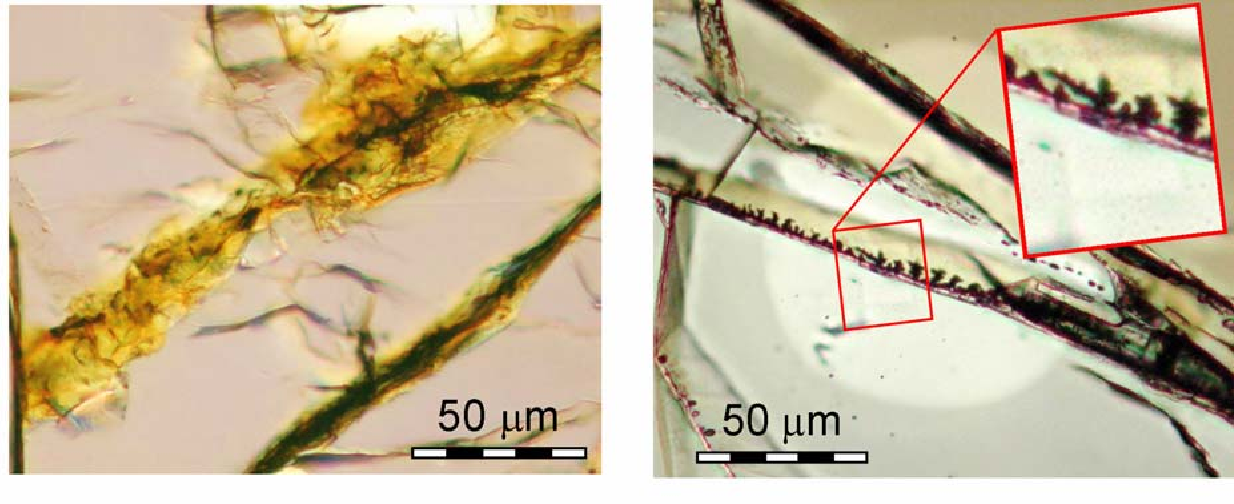 Fig 1. Optical views of Nakhla polished thin sections (above). Left: iddingsite veins in olivine. Isotopic analyses were performed on this region. Right: cpx region containing optically dark, dendritic