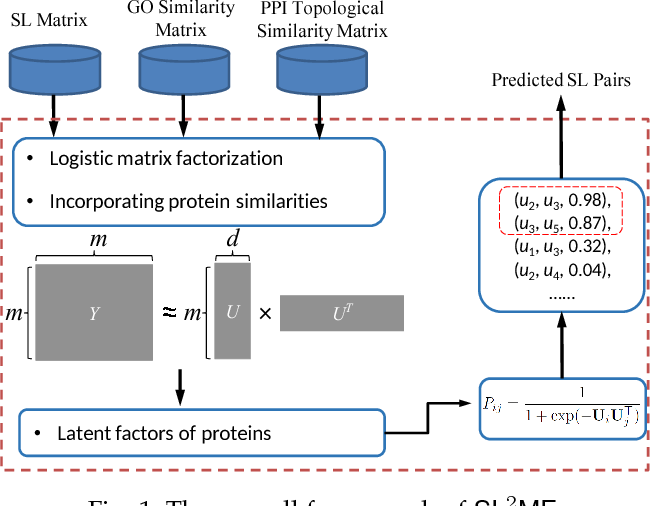Figure 1 for SL$^2$MF: Predicting Synthetic Lethality in Human Cancers via Logistic Matrix Factorization
