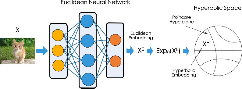 Figure 1 for Free Hyperbolic Neural Networks with Limited Radii