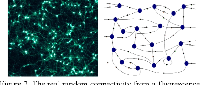 Figure 2 for Shallow Unorganized Neural Networks using Smart Neuron Model for Visual Perception