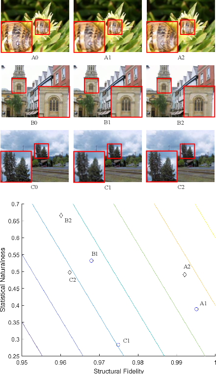 Figure 1 for Image Super-Resolution Quality Assessment: Structural Fidelity Versus Statistical Naturalness