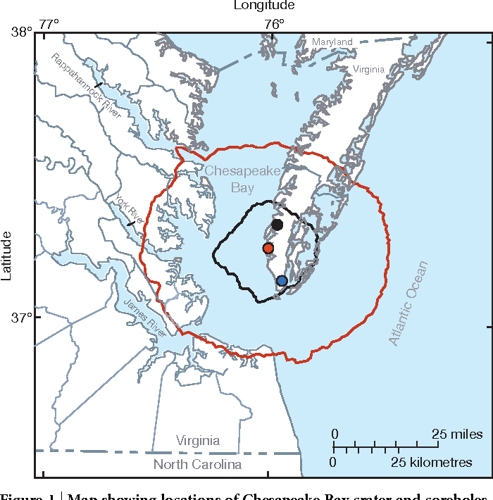 Figure 1   Map showing locations of Chesapeake Bay crater and coreholes.