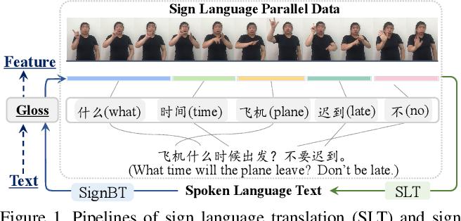 Figure 1 for Improving Sign Language Translation with Monolingual Data by Sign Back-Translation