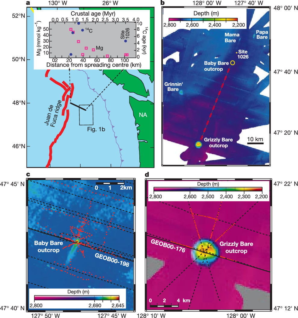 Figure 1 Maps of field area on the eastern flank of Juan de Fuca ridge, and selected geochemical data collected during ODP Leg 16812. a, Regional index map showing